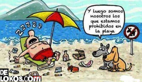 Prohibido perros en la playa