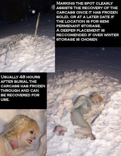 psicrofilia a la excitación debida al frío o a ver a personas con frío.