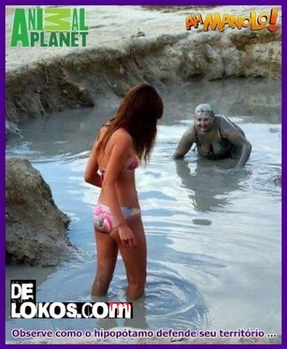 El hipopotamo….siempre defendiendo su territorio