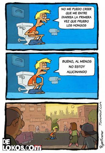 Setas Alucinogenas