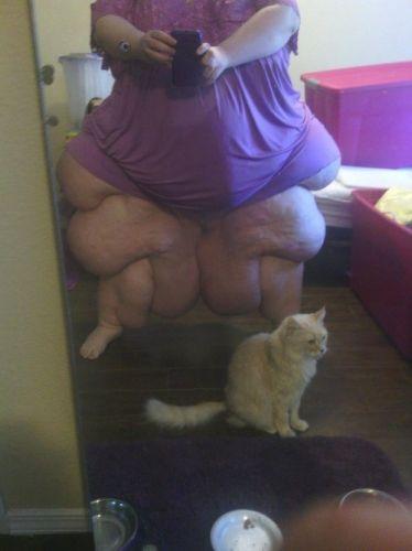 Foto al gato antes de comérmelo