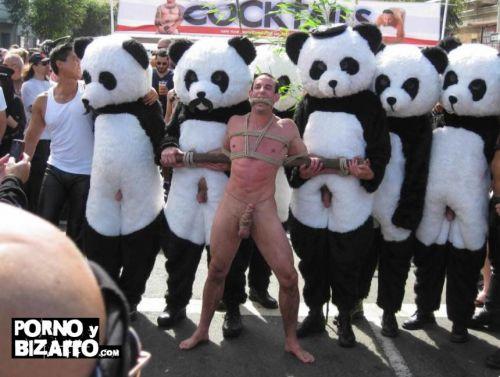 Salvemos a los osos panda