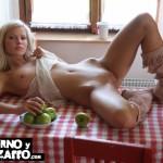 Imagen El almuerzo esta servido