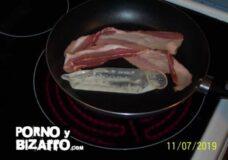 Imagen Bacon a la leche
