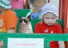 Imagen El tren feliz