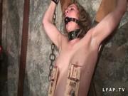 Sexo y Torturas