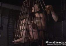 Imagen Metida en una jaula como un pajaro