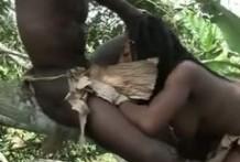 Porno Africano, Sexo salvaje