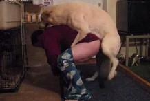 Perro se folla al gay de su dueño