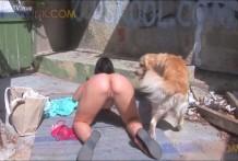 Zorra se lleva a la playa a su perro para tener sexo