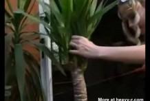 Se mete el tronco de un arbol por el coño y culo