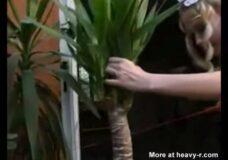 Imagen Se mete el tronco de un arbol por el coño y culo
