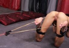 Fotos Extremas Tortura BDSM