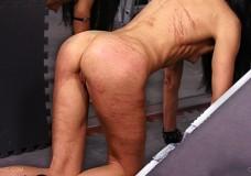 Fotos porno Castigo extremo a una puta lesbiana flaca