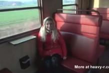 meando en el tren miniatura