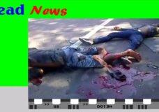 Imagen Videos impactantes