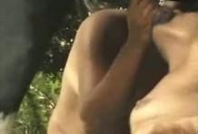 Dos mujeres teniendo sexo con un poni