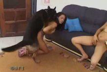 Zorra tetona se sorprende por lo bien que se siente follando con un perro