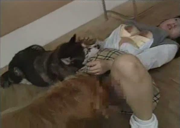 Japonesa cogiendo con dos perros