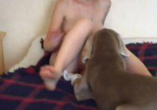 Imagen El perro quiere tener sexo con su dueña