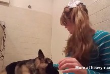 10 razones por que las mujeres deben tener sexo con los perros