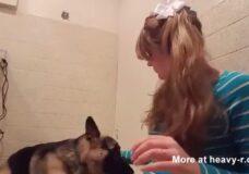 Imagen 10 razones por que las mujeres deben tener sexo con los perros