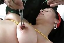 Extremas perforaciones en los genitales y pezones