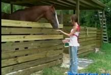 Horse Fuck Outdoor-Public porn miniatura