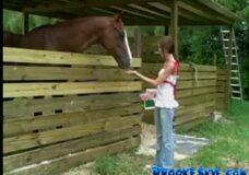 Imagen Chica se folla a un caballo