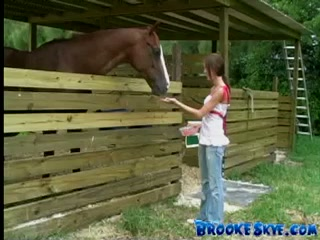 Chica se folla a un caballo