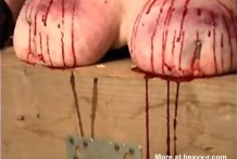Torturando las tetas de una cerda gorda