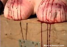 Imagen Torturando las tetas de una cerda gorda