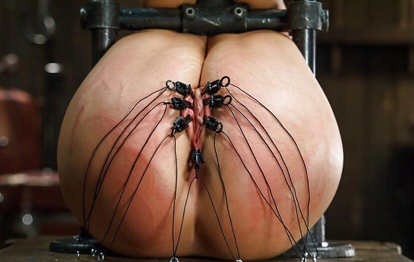 bondage extremo Search -