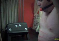 Imagen Tortura con Pistola Eléctrica en la polla y pezones