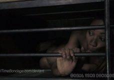 Imagen Mujeres encerradas en Jaulas como perras