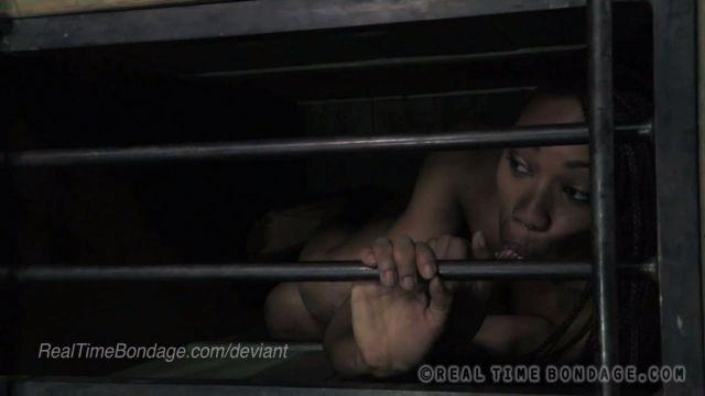 Mujeres encerradas en Jaulas como perras