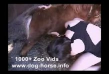 Chica Guarrilla tiene sexo con perros, caballos y ponis