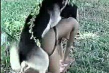 perros-follando-con-mujeres miniatura