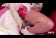Sexo con su perro y ella vestida de perra