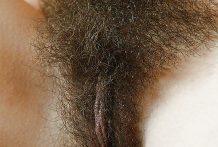 Fotos en primer plano de coños peludos