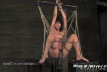 Tijeras para una tortura peluda