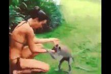 Intento de violación de un mono a una chica