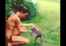 Imagen Intento de violación de un mono a una chica