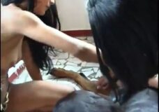 Imagen Dos chicas quieren lamerle la verga a un perro
