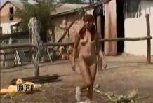 Mujeres en granjas de caballos para follar