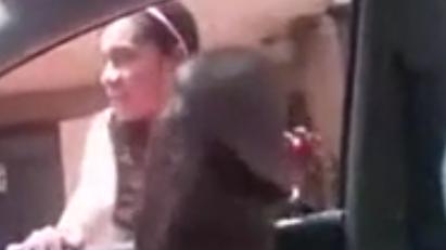 Polla Flash a una mexicana