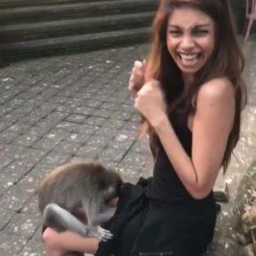 Chica caliente acosada sexualmente por el mono