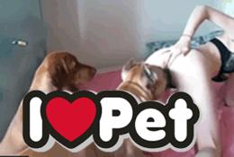 Bestialidad amateur adolescente follada por dos perros