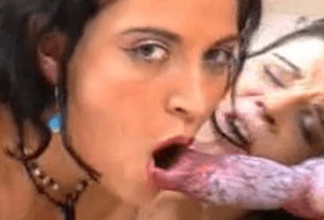 Mujeres cogiendo con animales domésticos