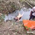 Fuerte Video Chica Violada y estrangulada miniatura